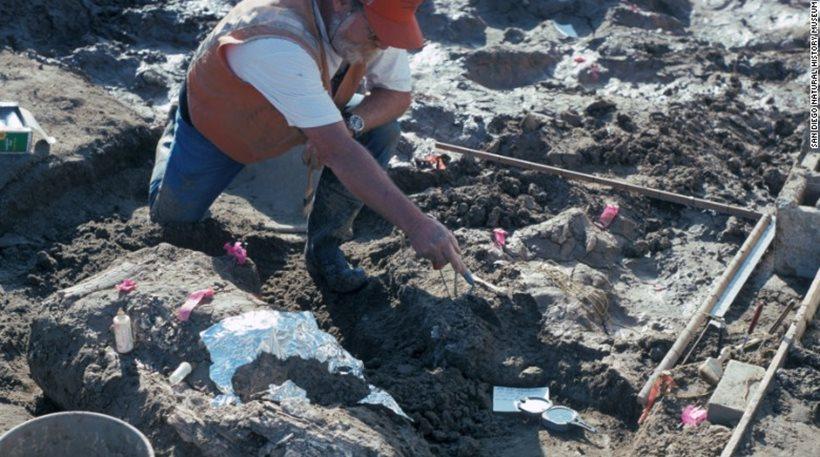 Μεγάλη ανακάλυψη από «σπόντα»: Στην Αμερική ζούσαν άνθρωποι πριν από 130.000 χρόνια